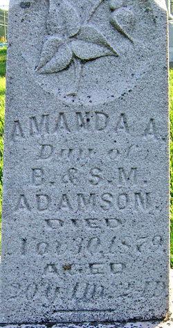 Amanda A Adamson