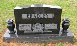 Andrew W Bradley