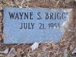 Wayne S. Briggs