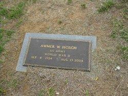 Ammer Willie Hosch