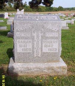 Robert McKinley