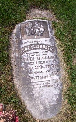 Jane Elizabeth <i>Lyons</i> Curry