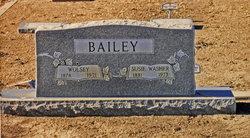 Wolsey Bailey