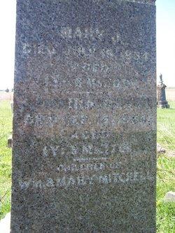 Mary J. Mitchell