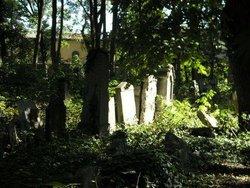 Jewish Cemetery W�hringer Friedhof