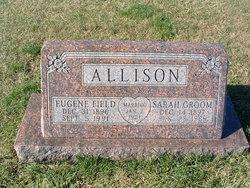 Sarah <i>Groom</i> Allison