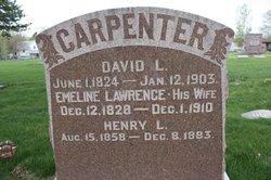David L Carpenter