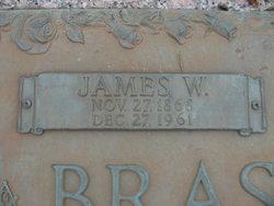 James Williamson Brasington