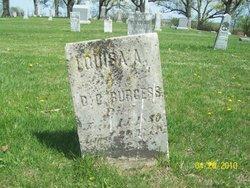 Louisa <i>Smith</i> Burgess