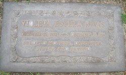 Violeta Estela Rivas