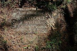 Braydon J Walter