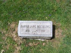 sarah jane mechling added by  burke stoughton