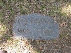 Otto M. Anderson