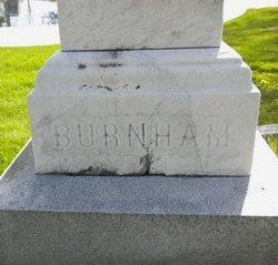 Nelson Thomas Burnham