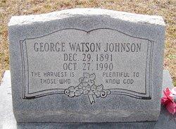 George Watson Johnson