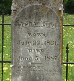 Zepra Olive