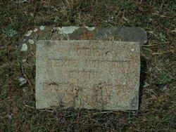 Sara Texana Texie <i>Wharton</i> Owens