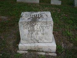 David Lloyd Burditt