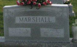 Terri L. <i>Pickett</i> Marshall