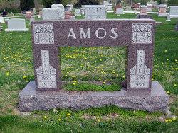Carl Amos