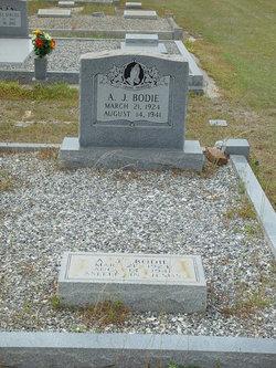 A. J. Bodie