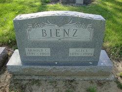 Alice <i>Walper</i> Bienz