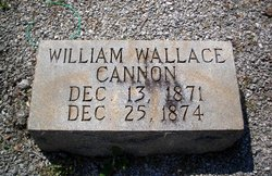 William Wallace Cannon