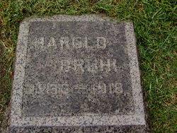 Harold Bruhl
