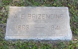 Amanda Emaline <i>Daughtery</i> Brizendine