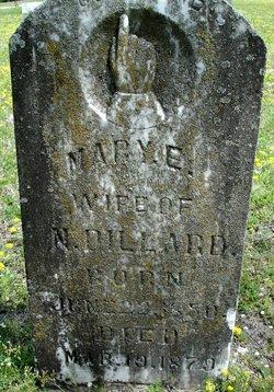 Mary Elizabeth <i>Wynne</i> Dillard