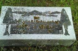 George W Ashbaugh