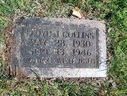 Lloyd J Collins