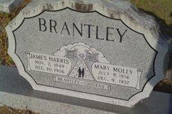 Mary Molly <i>Giddens</i> Brantley