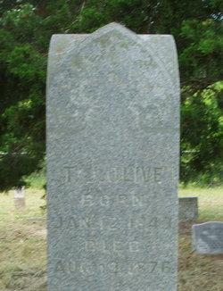 Thomas Jefferson Jay Olive