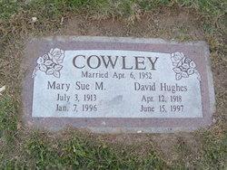 David Hughes Cowley