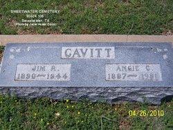 Angeline Catherine Angie Cavitt