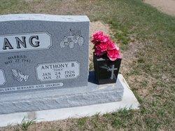 Anthony B Lang