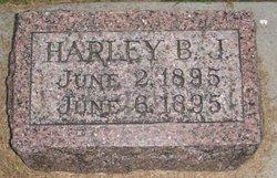 Harley B. J. Adolph