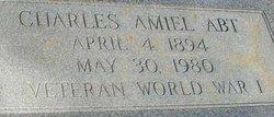 Charles Amiel Abt