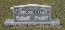 Dominic Ronals Biondolillo, Sr