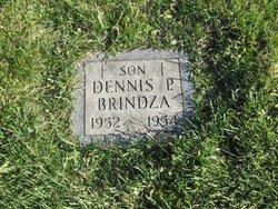 Dennis P. Brindza