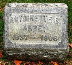 Antoinette Brown <i>Langworthy</i> Abbey