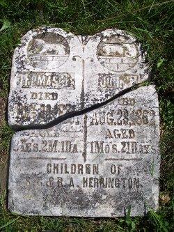 Thomas Erving Herrington