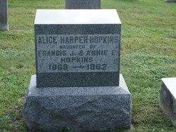 Alice Harper Hopkins