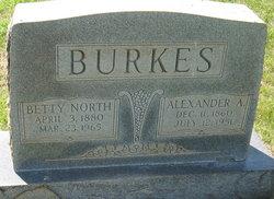 Alexander A. Burkes