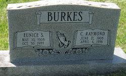Sallie Eunice <i>Stevens</i> Burkes