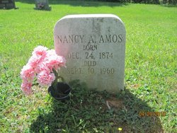 Nancy V E Nannie <i>Adams</i> Amos