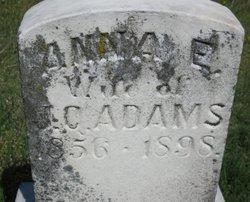 Anna E. <i>Sauer</i> Adams