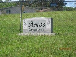 Elmer Ervin Amos, Sr