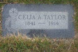 Celia A Taylor